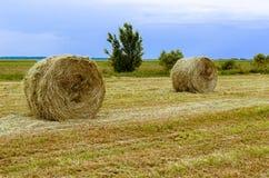 Escena rural Fotos de archivo