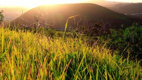 Escena rural con la hierba y las colinas almacen de metraje de vídeo