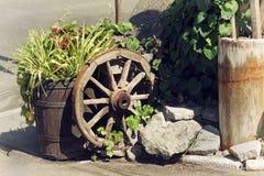 Escena rural con las plantas y la rueda de madera Imagenes de archivo