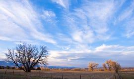 Escena rural de la última hora de la tarde foto de archivo