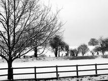 Escena rural de la nieve Fotografía de archivo libre de regalías
