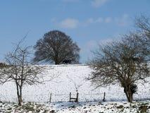 Escena rural de la nieve Fotos de archivo