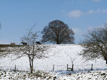 Escena rural de la nieve Imágenes de archivo libres de regalías