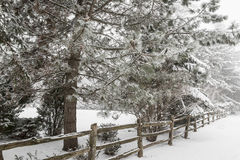 Escena rural del invierno con la cerca Fotografía de archivo libre de regalías