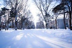 Escena Sapporo, Hokkaido, Japón del invierno Imagen de archivo libre de regalías