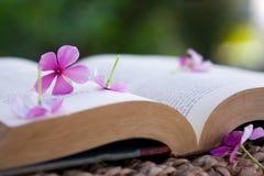 Escena serena de un libro y de flores foto de archivo