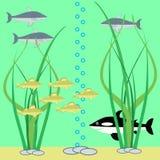 Escena subacuática con los pescados stock de ilustración