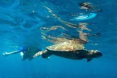 Escena subacuática tropical - tortuga de mar Fotos de archivo libres de regalías