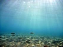 Subacuático Fotos de archivo