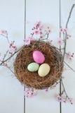 Escena temática de la vida del día de fiesta de Pascua aún en luz natural Fotografía de archivo libre de regalías