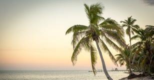 Escena tranquila de la playa imágenes de archivo libres de regalías
