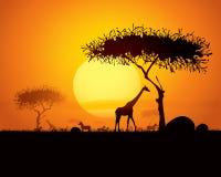 Escena tranquila de la puesta del sol en África ilustración del vector