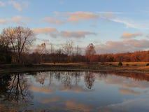 Escena tranquila del lago en otoño con la reflexión del árbol y de la nube Imagen de archivo libre de regalías