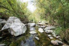 Escena tranquila del río Fotografía de archivo libre de regalías