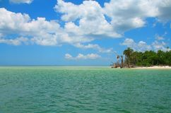 Escena tropical de la Florida Foto de archivo