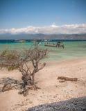 Escena tropical de la playa Imagen de archivo