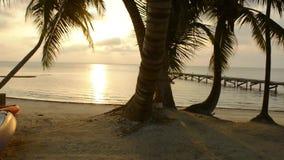 Escena tropical de la playa del kajak almacen de metraje de vídeo