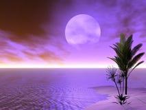 Escena tropical hermosa Imagenes de archivo