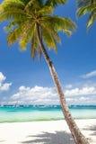 Escena tropical idílica Imagen de archivo libre de regalías