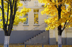 escena urbana del otoño Fotos de archivo libres de regalías