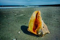 Escenas de la playa de la isla de la caza Foto de archivo libre de regalías