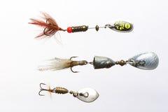 Esche di pesca Fotografia Stock