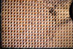 Escher在威尼斯,意大利喜欢在圣马克` s大教堂里面的地垫 免版税库存图片
