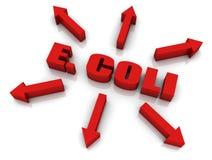 Escherichia coli Immagine Stock