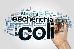 Escherichia coli word cloud on grey background Royalty Free Stock Photo