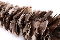 Escoba para barrer la pluma del polvo aislada Imágenes de archivo libres de regalías