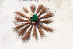 Escobas de sequía de la muchacha Foto de archivo