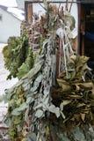 Escobas del abedul, del roble y del cerezo para el baño ruso Imagen de archivo