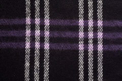 escocés Fotografía de archivo libre de regalías