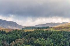Escocés Hilldide sobre Crieff en Escocia antes de que lloviera Fotografía de archivo