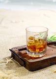 Escocês na praia Imagem de Stock Royalty Free