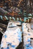 escocia junio 2008 Langosta y pintura flakey Imagen de archivo libre de regalías