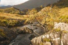 escocia Lochaber En octubre de 2104 Imagenes de archivo