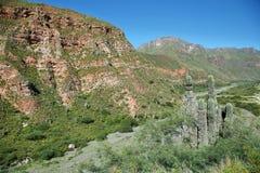 Escoipe Gorge (Quebrada de Escoipe) Stock Photography