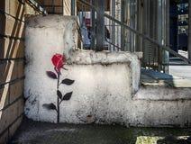 Escoja el graffitti color de rosa de la plantilla en la pared en Londres Imágenes de archivo libres de regalías