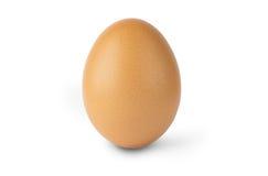 Escoja el huevo marrón del pollo aislado en el fondo blanco Foto de archivo libre de regalías