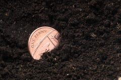 Escoja una moneda británica de la moneda de los peniques en un pote del estiércol vegetal Imágenes de archivo libres de regalías