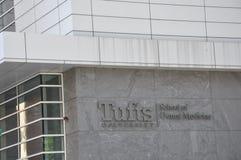 Escola da universidade dos topetes da medicina dental Fotos de Stock