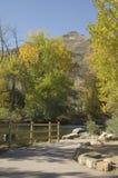 Escola de Colorado das minas Fotografia de Stock