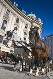 Escola de equitação espanhola, Viena foto de stock