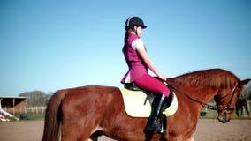 Escola de equitação r vídeos de arquivo
