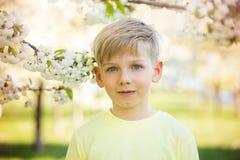 Escolar adorable en un jardín floreciente del manzano, primavera Fotografía de archivo