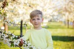 Escolar adorable en un jardín floreciente del manzano, primavera Fotografía de archivo libre de regalías