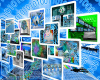 escolha Fotos de Stock