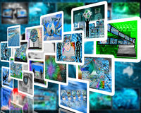 escolha Fotografia de Stock