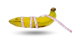 Escolha a banana cultivada no fundo branco Fotografia de Stock Royalty Free